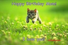 Mom Birthday Meme - happy birthday meme