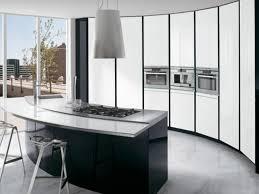 painting kitchen cabinets black u2014 tedx designs the amazing idea