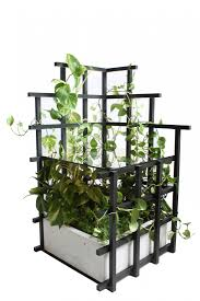 indoor vines trellis tables and shelves from moonish gardenista