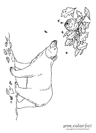 black bear with bees coloring page print color fun