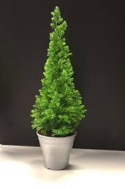 point mini tree in silver pot