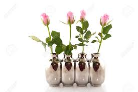 Silver Vases Row Pink Roses In Silver Vases Isolated Over White Stock Photo