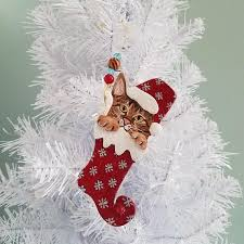 abyssinian cat ornament personalize ornament cat
