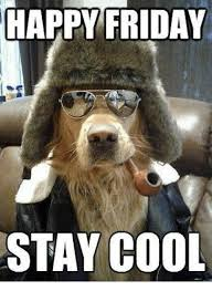 Stay Cool Meme - happy friday stay cool friday meme on me me