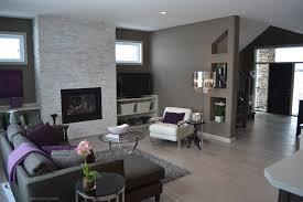 livingroom interior spacious modern living room interiors house of paws