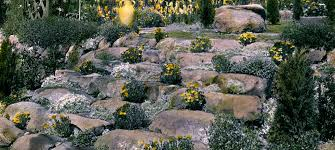 Rocks In Gardens Rock Garden Designs For The Best Rock Gardens Pictures