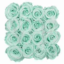 Teal Roses Small Square Venus Et Fleur