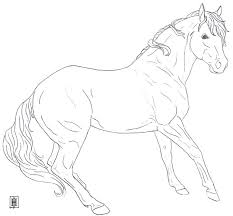 205 coloring horses images horse coloring