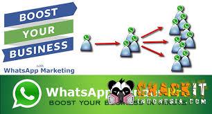 tutorial whatsapp marketing whatsapp sender pro cracked crackit indonesia