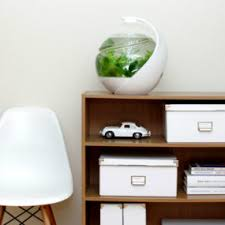 Fish Tank Desk by 20 Most Unusual Fish Tank Designs For Office And Home