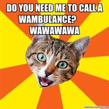 Wambulance Meme - you need me to call a wambulance wawawawa