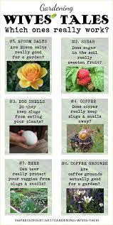 gardening tips 237 best gardening ideas images on pinterest gardening