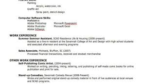 professional resume makers resume template format resume format and resume maker what should