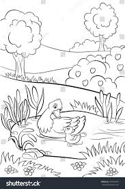 coloring pages kind duck little cute stock vector 394950049