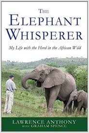 the elephant whisperer my with the herd in the