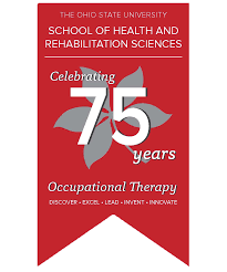 doctorate in occupational therapy of health