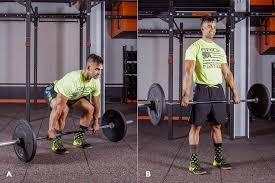 Bench Barbell Row Barbell Workouts The 8 Week Program For Beginners Greatist