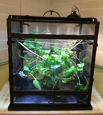 Zoo Med Lighting by Enclosure Feedback Dragon Strand Mistking And Zoo Med