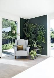 Interior Plant Wall Best 25 Interior Plants Ideas On Pinterest House Plants Plant