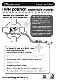 wetlands worksheet free worksheets library download and print