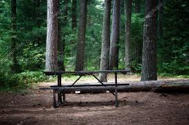 table in the wilderness picnic table in the wilderness stock photo rohitseth 29187747