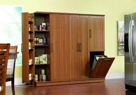 Trash Can Storage Cabinet Chic Large Wooden Storage Cabinets With Tilt Out Trash Bin Storage