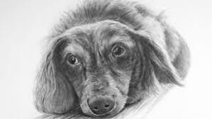 graphite or pencil drawing tutorials