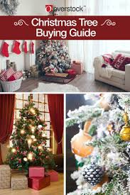 the complete christmas tree buying guide overstock com