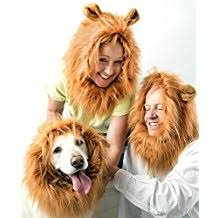 awesome lion halloween costume contemporary halloween costume