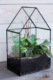 big glass house planter handmade glass succulent terrarium