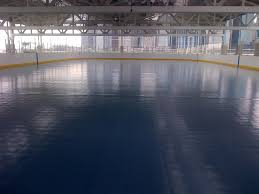 pier 2 roller rink opening celebration brooklyn bridge park
