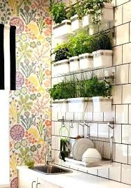 kitchen herb garden ideas kitchen window herbs image for kitchen window hanging herb