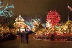 brookfield zoo winter lights holiday magic brookfield zoo lights chicago events pinterest