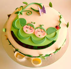 41 best baby shower cake for twins images on pinterest baby