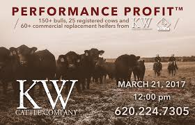 kw for sale bulls for sale kw cattle
