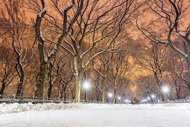 best ways to enjoy winter in new york city lonely planet travel