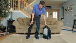 Sears Upholstery Cleaner Carpet Cleaning Sears Home Services