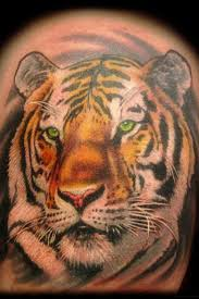 50 popular tiger tattoos collection with meanings