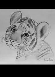 19 best drawings images on pinterest drawing ideas art drawings
