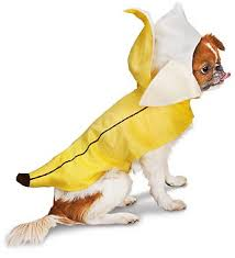 Banana Halloween Costume 5 Tail Waggingly Cute Dog Halloween Costumes
