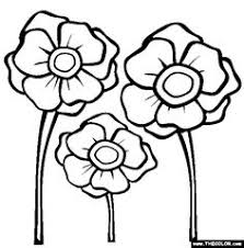 poppy coloring pages remembrance clipart clipart