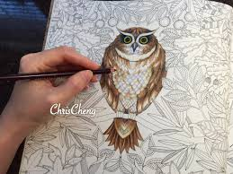 secret garden owl u0027s coloring with colored pencils youtube