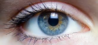 Symtoms Of Blindness Luxturna A Giant Step Forward For Blindness Gene Therapy U2013 A