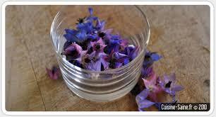 bourrache cuisine cuisine bio test les fleurs comestibles la fleur de