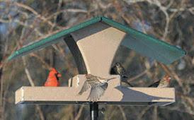 Backyard Nature Products Platform Bird Feeders And Fly Thru Bird Feeders