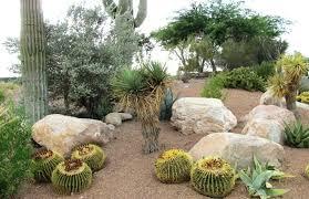 Rocks Garden Rocks For Garden Beds Golbiprint Me