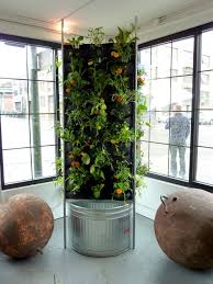 44 best vertical gardening 101 images on pinterest gardening