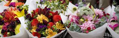 wholesale flowers wholesale flowers welcome to flowers by