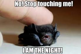 Cute No Meme - i am the night no stop touching me i am the night know your meme