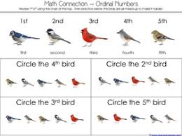 counting is for the birds kindergarten literature unit printables